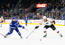 Toronto Marlies vs. Cleveland Monsters
