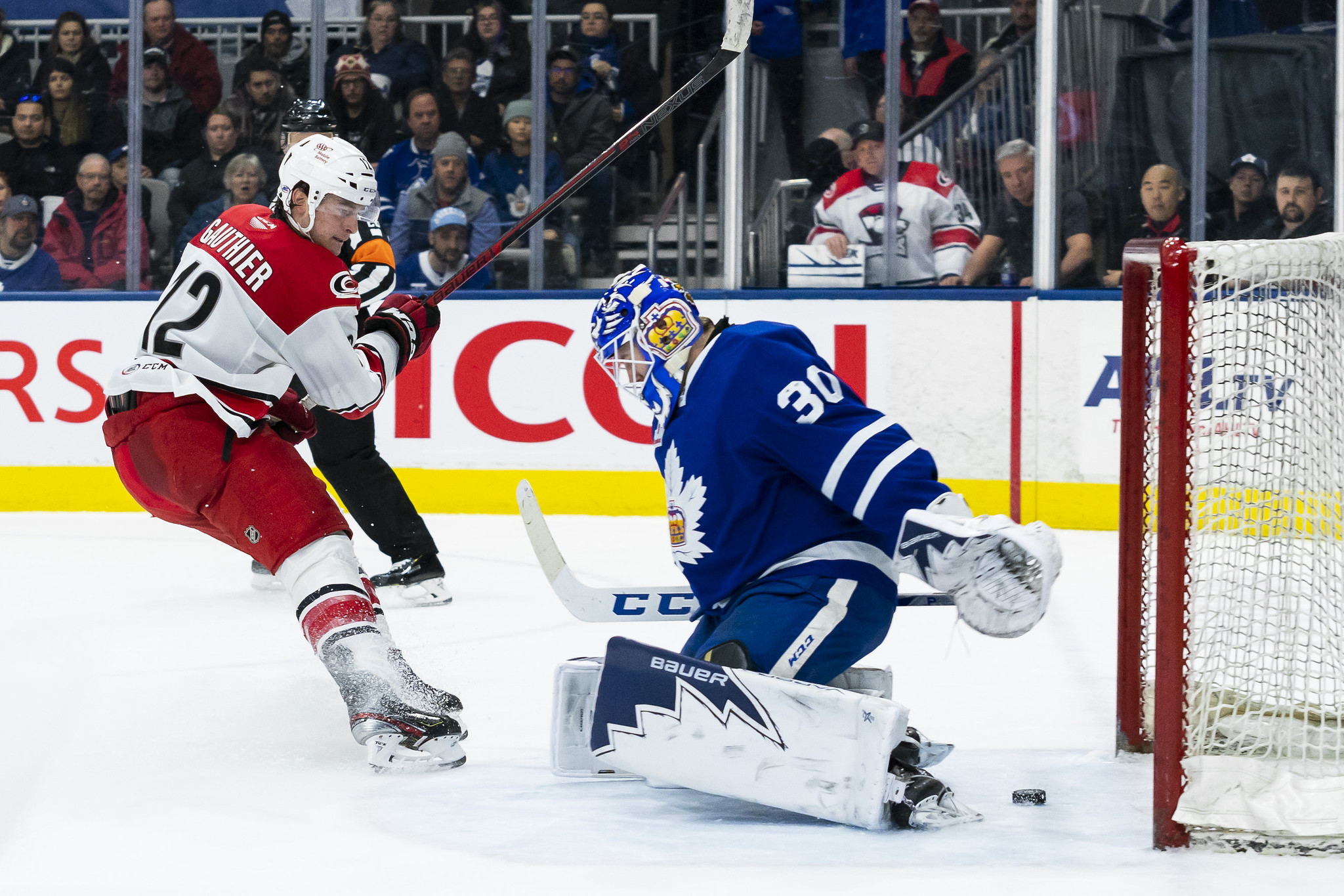 Toronto Marlies vs. Charlotte Checkers
