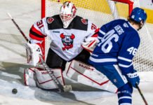 Toronto Marlies vs. Binghamton Senators